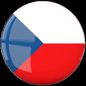 Czechy flaga